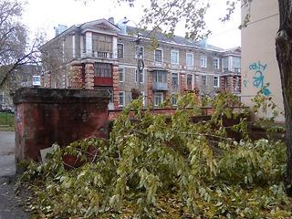 Ураганный ветер оставил без электричества дома жителей региона