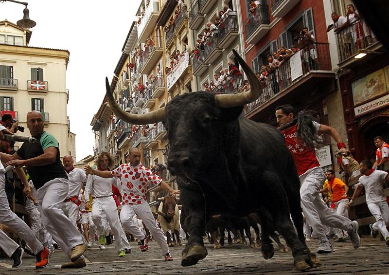 Гонки с быками